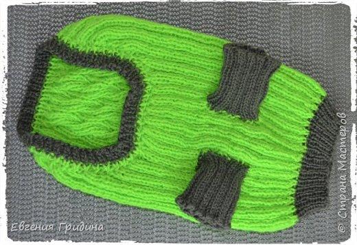 Яркий, теплый свитерок для собачки :)  Нитки акриловые, полушерсть.  фото 9