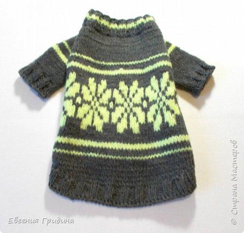 Яркий, теплый свитерок для собачки :)  Нитки акриловые, полушерсть.  фото 3