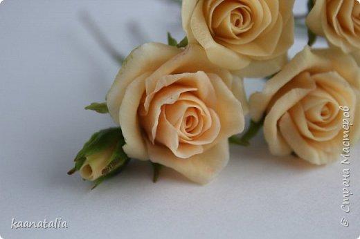 Шпильки персиковые розы фото 3