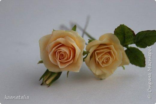 Шпильки персиковые розы фото 4