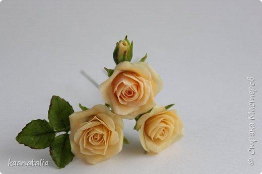 Шпильки персиковые розы фото 6