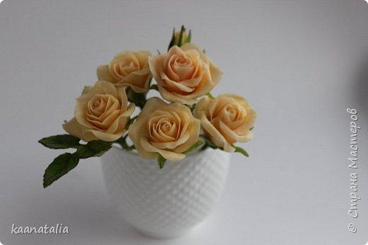 Шпильки персиковые розы фото 1