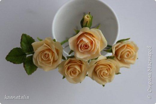 Шпильки персиковые розы фото 8