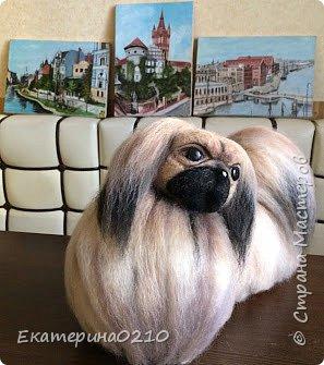 Собака из шерсти фото 2