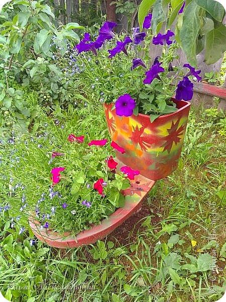 Здравствуйте гости и друзья моего блога! Совсем недавно я показала вам, как мы благоустраиваем свой огород - сад. Вам интересно? Загляните сюда: https://stranamasterov.ru/node/1149296 А сегодня я к вам со своими цветами, которые цветут на данный момент. Пионы нынче расцвели намного позднее. Вот уже последние цветочки. фото 14