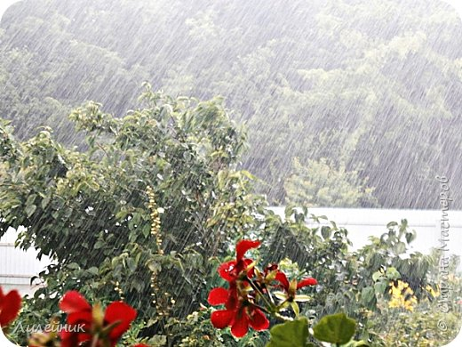 Дождь продолжительностью 5 минут фото 4