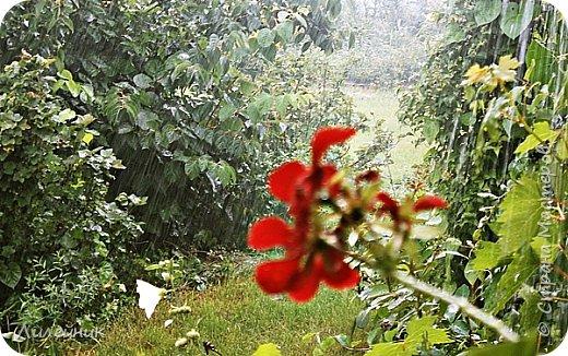 Дождь продолжительностью 5 минут фото 7