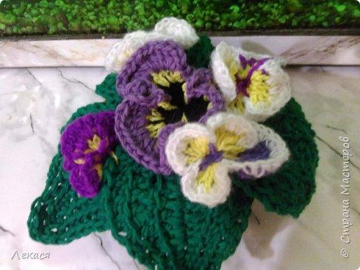 цветы Анютины глазки крючком фото 1