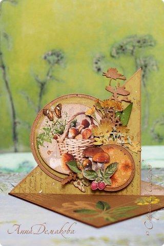"""Доброго времени суток дорогие друзья! Покажу вам еще одну сложную открытку. Такая конструкция называется """"парус"""". Открытку делала в подарок любителю погулять по лесу с корзинкой в руках."""