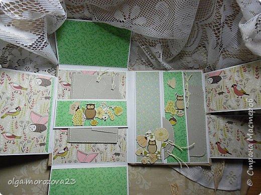 """Добрый день, приглашаю Вас к просмотру мини-альбома """"Совы"""". Размер мини -альбома 21,5*16,5 см, имеет один разворот, вмешает до 40 фото.  Мини - альбом сделан за один вечер в подарок. Накануне позвонили знакомые и сообщили, что хотят посетить наш Новосибирский зоопарк, так и родился этот миник.   фото 9"""