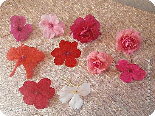 Здравствуйте,все любители цветов! С приходом весны, я как и большинство любителей цветов погружаемся в цветочно-посевные хлопоты; сеем семена,черенкуем вазоны. Всходы растений вырастают, черенки хорошо укоренились в стаканчиках и начинаешь ломать голову-как, куда, и с кем все это посадить. С тары идет вход все- ведра, тазики, дырявые старые миски, ящики и тд, и тп.Наступает июнь, июль, смотришь какая композиция получилась, а какая нет. Смотрим. В ящику посажены две пеларгонии и бальзамин из коллекции Сафари(сеянец прошлого года). фото 26