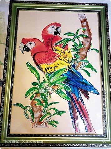 Птичий рай фото 3