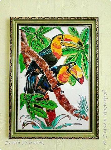 Птичий рай фото 4