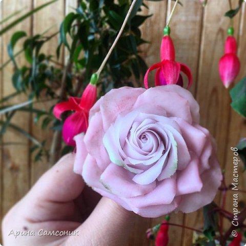 Роза из полимерной глины без тонировки)  фото 3