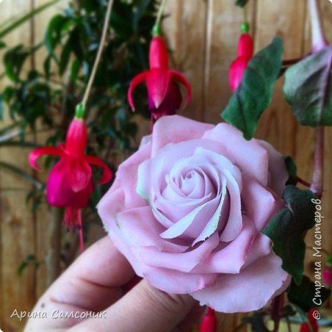 Роза из полимерной глины без тонировки)  фото 5