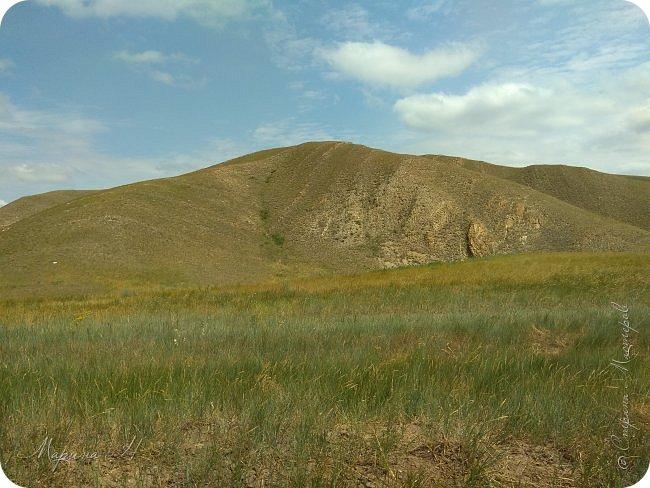 Сегодня приглашаю погулять с нами по бескрайним степям Хакасии. фото 1