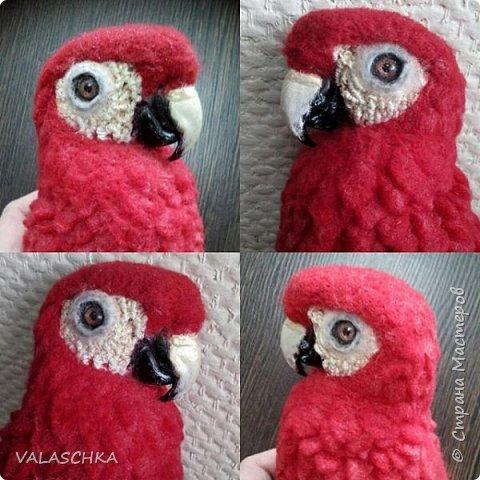 Я очень люблю попугаев Ара. Поэтому решила свалять такую птицу из шерсти. А почему бы и нет... фото 2