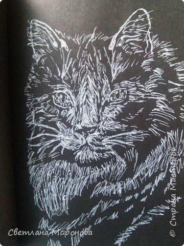 Первый раз рисовала на черной бумаге. Попробовала угольным белым карандашом, но после закрепления рисунок потемнел фото 4