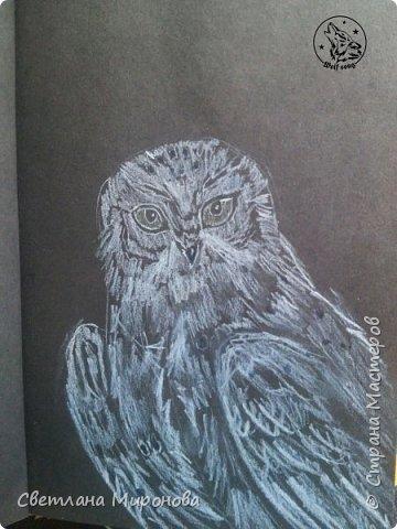 Первый раз рисовала на черной бумаге. Попробовала угольным белым карандашом, но после закрепления рисунок потемнел фото 1