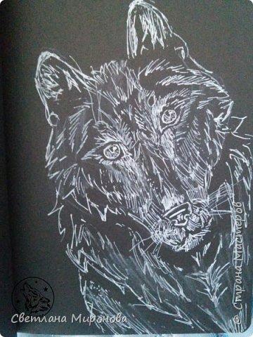 Первый раз рисовала на черной бумаге. Попробовала угольным белым карандашом, но после закрепления рисунок потемнел фото 3