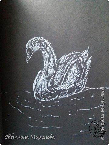 Первый раз рисовала на черной бумаге. Попробовала угольным белым карандашом, но после закрепления рисунок потемнел фото 5