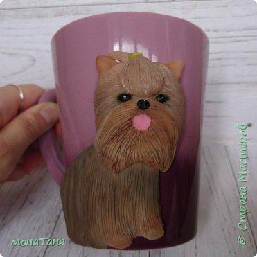 Чашка с йоркширским терьером