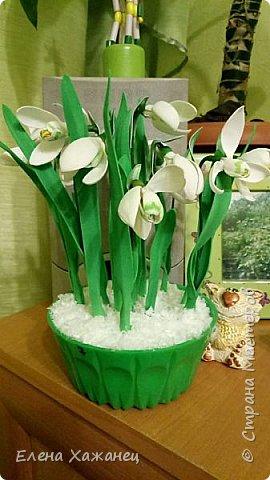 Воспоминание о первоцветах фото 1