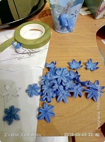 Воспоминание о первоцветах фото 3