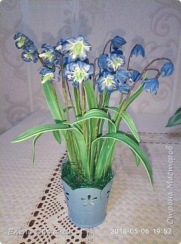 Воспоминание о первоцветах фото 2