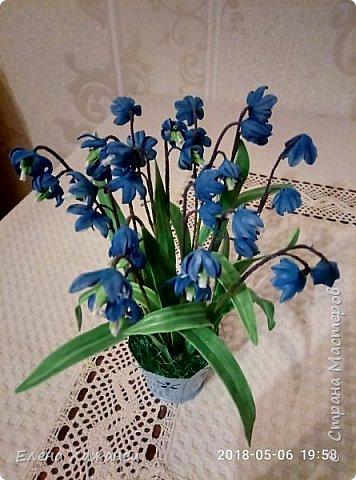 Воспоминание о первоцветах фото 4