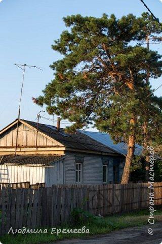 Вот и у нас в Амурской области наступил сезон цветения лотосов. фото 11
