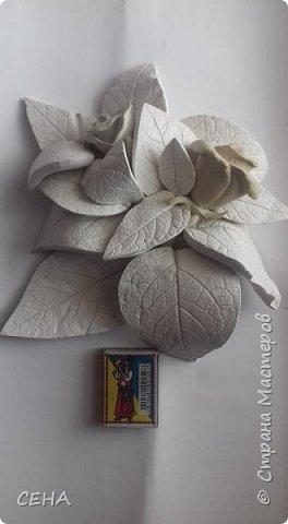 фрагмент деталей для создания барельефа на стене-розы, сделано из гипса   фото 1