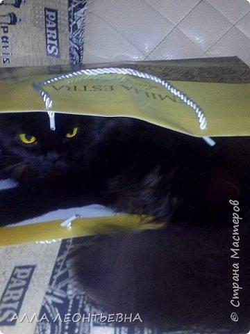 """""""У кого есть кошка, тот может не бояться одиночества""""…  И так  ...-решили мы \с дочкой\ купить котенка! Милый,пушистый комочек! фото 12"""