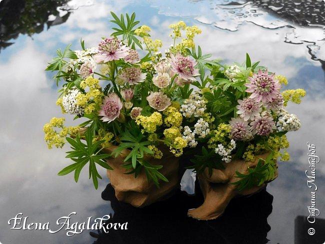 Добрый день! Этим летом я решила осуществить еще одну свою мечту - научится цветочному дизайну. Очень люблю цветы, травки-муравки, деревья и вообще все растения. Уже третий месяц я учусь создавать красоту! Очень увлекательно работать с цветами! Я взяла небольшой курс по цветочному дизайну. Дома делаю оранжировки из того что под рукой, беру цветы из своего садика. Другие композиции делала для цветочного магазина где прохожу практику. Делюсь красотой! фото 6
