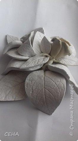 фрагмент деталей для создания барельефа на стене-розы, сделано из гипса   фото 8