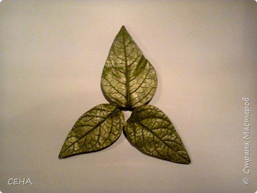 фрагмент деталей для создания барельефа на стене-розы, сделано из гипса   фото 6