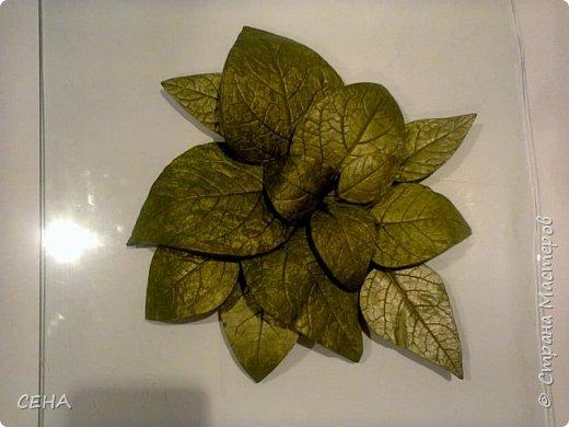 фрагмент деталей для создания барельефа на стене-розы, сделано из гипса   фото 4