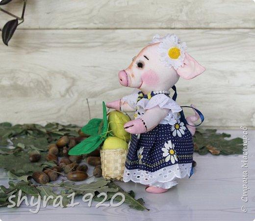 Свинка и Ромашка.   Цвела ромашка, на луг, три месяца росла Но по тропе, на свет луны свинья за ней пришла. Сорвав волнуясь лепестки в слезах нашла ответ Нет он не любит, и теперь ромашки больше нет.   Автор неизвестен.  фото 3