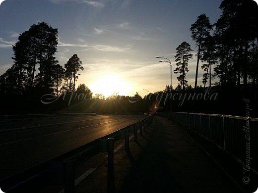 """Решила выставить серию лесных """"открывашек"""".)) Парад открывают фото со вчерашней прогулки.))) Гуляли далеко, на новый мост. фото 2"""
