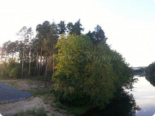 """Решила выставить серию лесных """"открывашек"""".)) Парад открывают фото со вчерашней прогулки.))) Гуляли далеко, на новый мост. фото 4"""