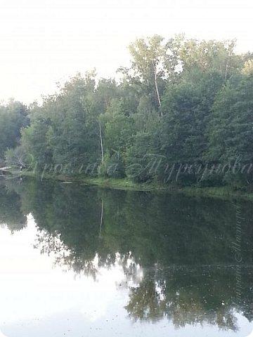 """Решила выставить серию лесных """"открывашек"""".)) Парад открывают фото со вчерашней прогулки.))) Гуляли далеко, на новый мост. фото 3"""