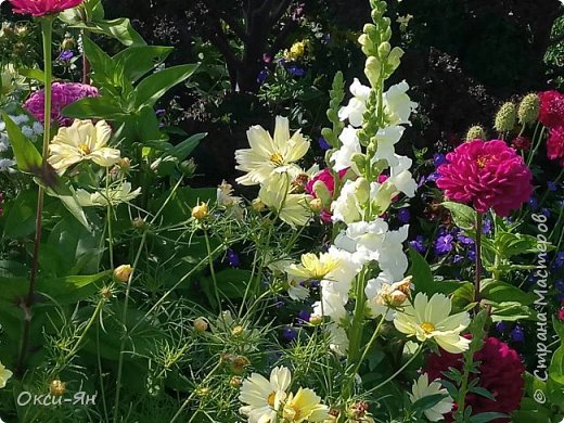 Уж август на дворе.Скоро придется наводить порядок во саду и в огороде и для садового инвентаря я реанимировала большой военный сундук. фото 12