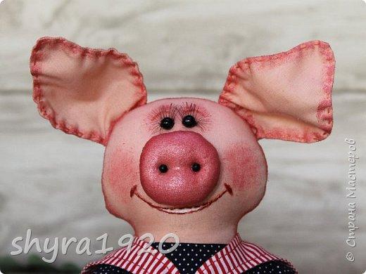 """Сказала борову свинья: """"Очень уж устала я. У меня один каприз - Хочу я на море, в круиз. К солнцу, к пальмам, на юга Уезжаю. Всем пока!""""  Автор: Карина Арнестина  фото 6"""