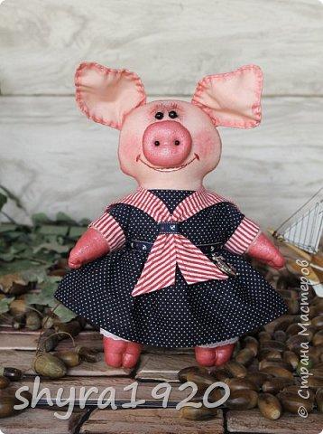 """Сказала борову свинья: """"Очень уж устала я. У меня один каприз - Хочу я на море, в круиз. К солнцу, к пальмам, на юга Уезжаю. Всем пока!""""  Автор: Карина Арнестина  фото 2"""