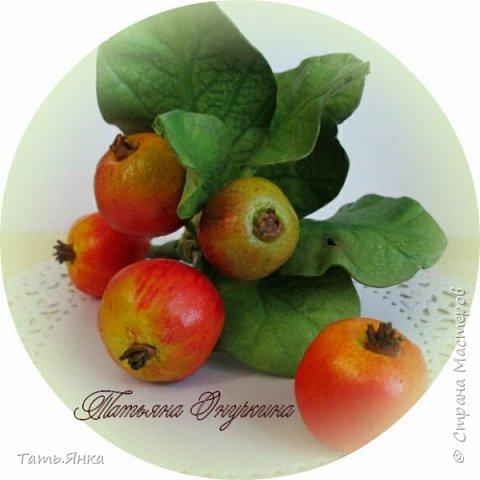 Яблочки из тейп-ленты, листья фоамиран. фото 1