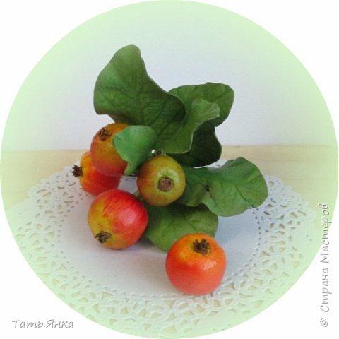 Яблочки из тейп-ленты, листья фоамиран. фото 2