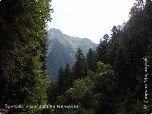 Прошёл почти ровно год с того дня, а такое впечатление, что это было вчера. Неописуемой красоты природа Архыза, Белые водопады, пушистые горы, на которые можно смотреть бесконечно. Я почему-то была уверена и ожидала увидеть скалистые голые горы. Наверное насмотрелась в своё время на фотографии Пятигорска, поэтому представляла увидеть нечто подобное. До сих пор не верится, что можно было смело пить воду, что бежала под ногами, и не бояться за последствия. фото 42
