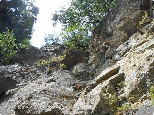 Прошёл почти ровно год с того дня, а такое впечатление, что это было вчера. Неописуемой красоты природа Архыза, Белые водопады, пушистые горы, на которые можно смотреть бесконечно. Я почему-то была уверена и ожидала увидеть скалистые голые горы. Наверное насмотрелась в своё время на фотографии Пятигорска, поэтому представляла увидеть нечто подобное. До сих пор не верится, что можно было смело пить воду, что бежала под ногами, и не бояться за последствия. фото 45