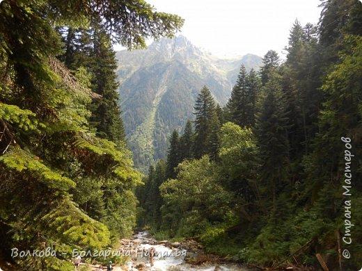 Прошёл почти ровно год с того дня, а такое впечатление, что это было вчера. Неописуемой красоты природа Архыза, Белые водопады, пушистые горы, на которые можно смотреть бесконечно. Я почему-то была уверена и ожидала увидеть скалистые голые горы. Наверное насмотрелась в своё время на фотографии Пятигорска, поэтому представляла увидеть нечто подобное. До сих пор не верится, что можно было смело пить воду, что бежала под ногами, и не бояться за последствия. фото 46