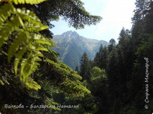 Прошёл почти ровно год с того дня, а такое впечатление, что это было вчера. Неописуемой красоты природа Архыза, Белые водопады, пушистые горы, на которые можно смотреть бесконечно. Я почему-то была уверена и ожидала увидеть скалистые голые горы. Наверное насмотрелась в своё время на фотографии Пятигорска, поэтому представляла увидеть нечто подобное. До сих пор не верится, что можно было смело пить воду, что бежала под ногами, и не бояться за последствия. фото 48